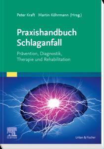 Praxishandbuch Schlaganfall