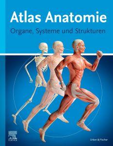 Atlas Anatomie für Laien